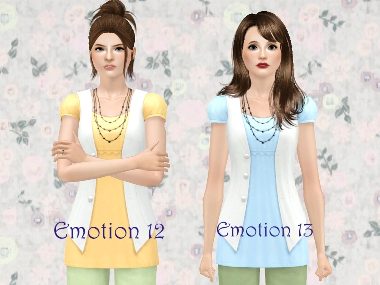 Emotion12and13