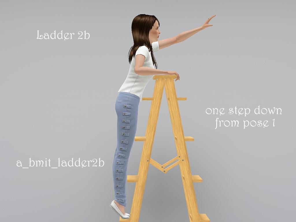 blogladder2b