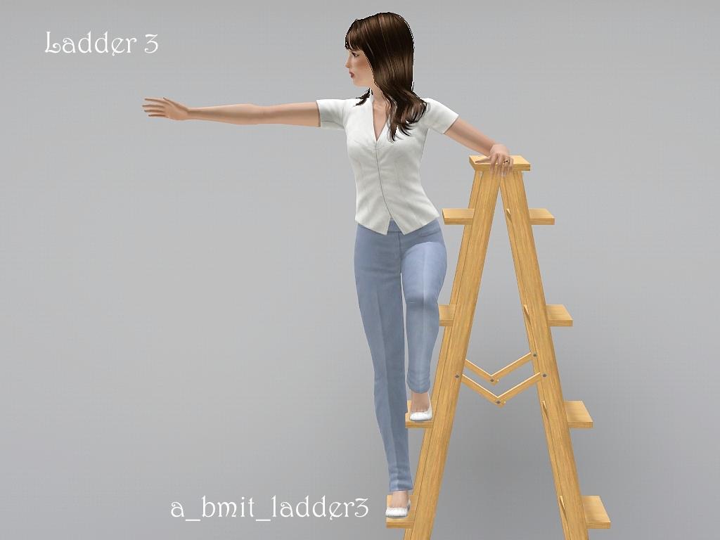 blogladder3