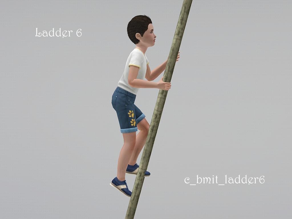 blogladder6